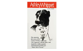 Ashley Whippet